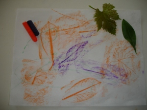 Here is a finished drawing along with materials; leaves and crayons
