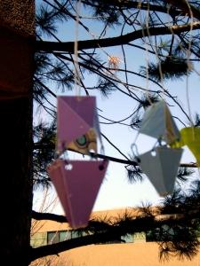 bird-feeder-3-iphoto1